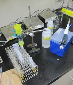 lab-cldrm.jpg